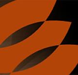 Kite Clinic_Branding